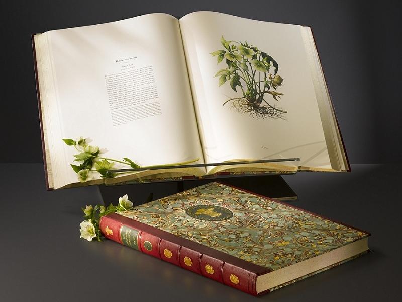 The Transylvania Florilegium
